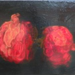 Fading Pomegranate 16x20